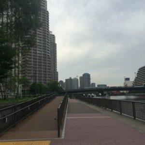 豊洲運河 ランニング