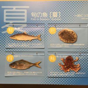 豊洲市場 水産仲卸売場棟 夏の魚