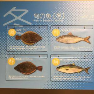 豊洲市場 水産仲卸売場棟 冬の魚